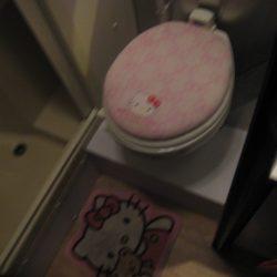 Airline Streamer toilet